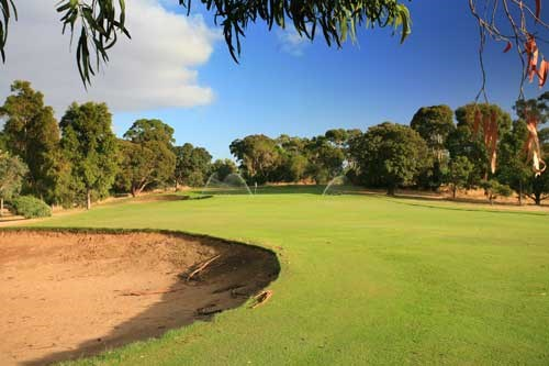 Mount Gambier Golf Club Hole 2