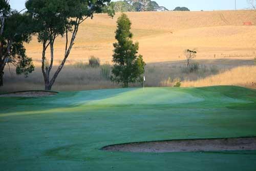 Mount Gambier Golf Club Hole 4
