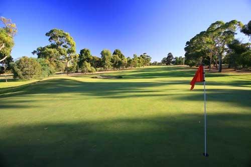 Naracoorte Golf Club Hole 1