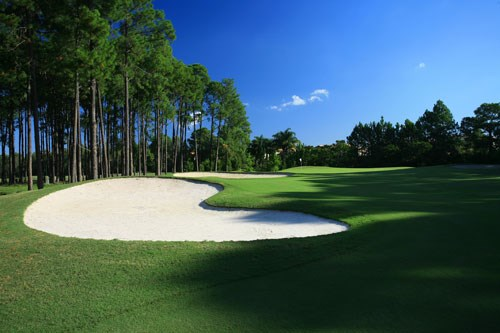 Sanctuary Cove Golf and Country Club - The Pines Hole 3