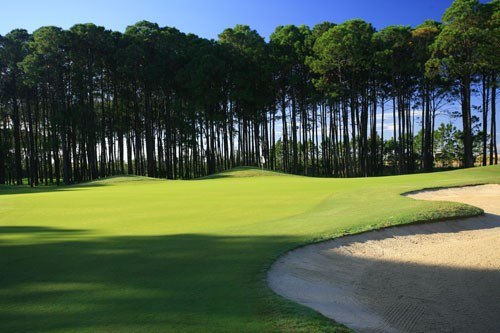 Sanctuary Cove Golf and Country Club - The Pines Hole 8