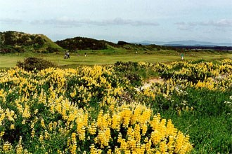 St Andrews Links - Jubilee Course