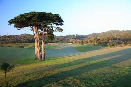 Portsea Golf Club Hole 1