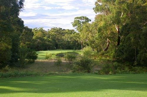 Newcastle Golf Club Hole 7