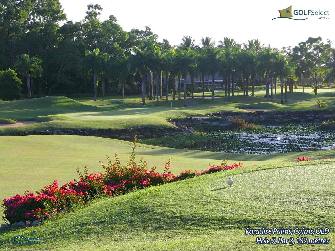 Paradise Palms Resort and Country Club Hole 7, Par 3, 182 metres
