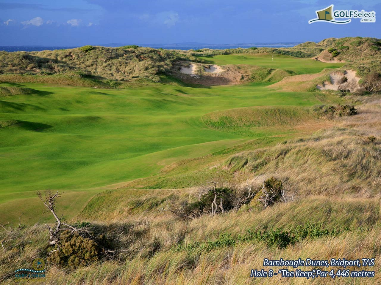 "Barnbougle Dunes Golf Links Hole 8, Par 4 ""The Keep"", 446 metres"