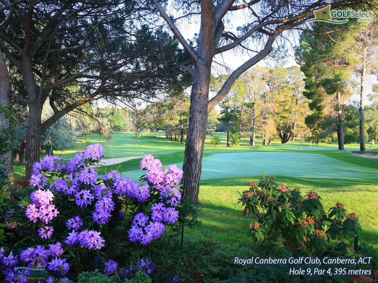 Royal Canberra Golf Club- Westbourne Course  Hole 9, Par 4, 395 metres