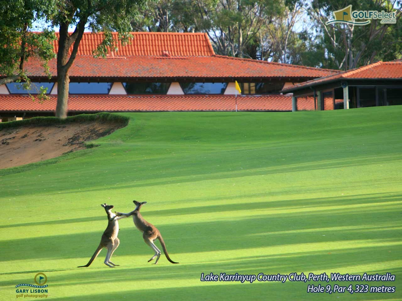 Lake Karrinyup Country Club Hole 9, Par 4, 323 metres