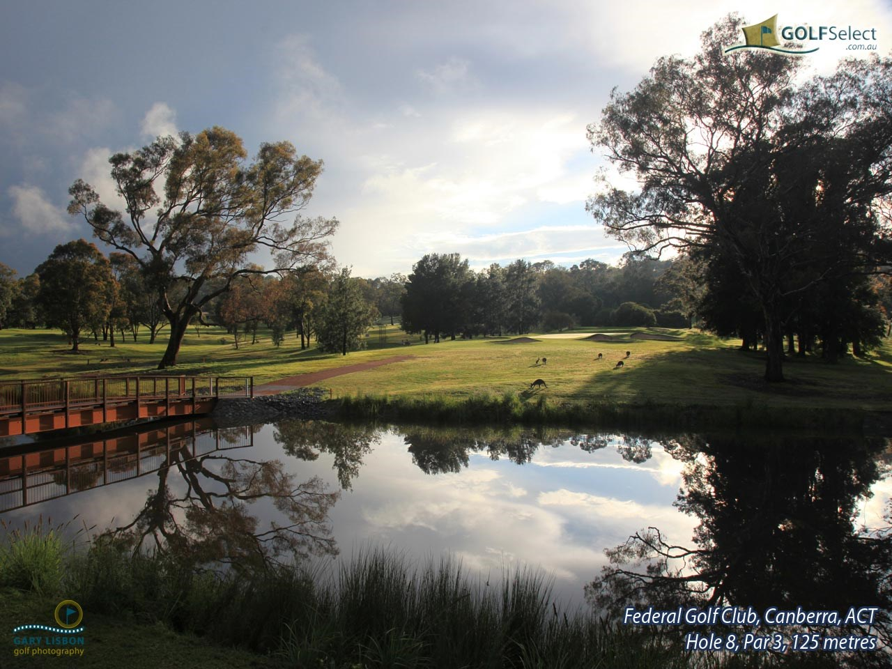Federal Golf Club Hole 8, Par 3, 125 metres