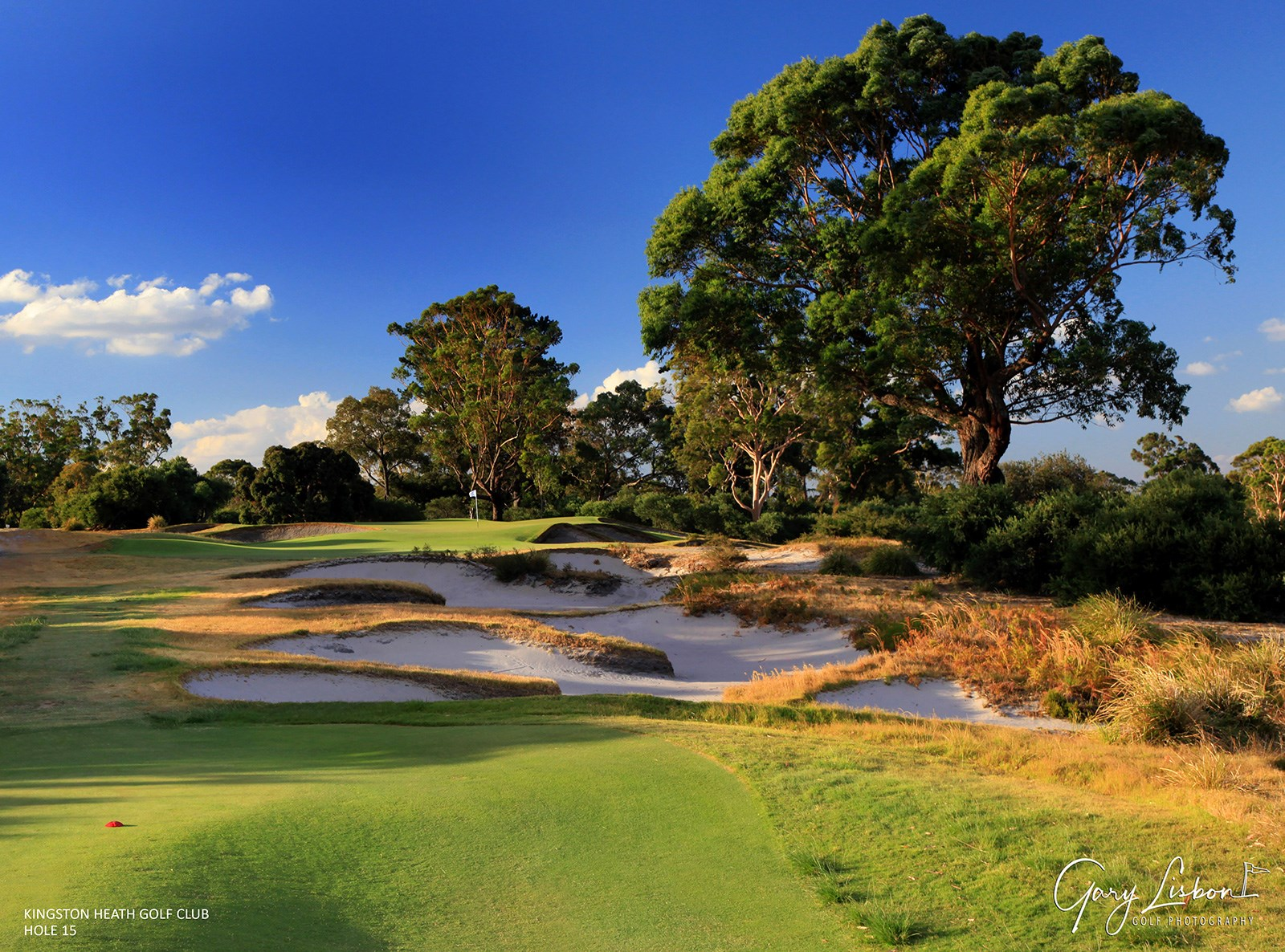 Kingston Heath Golf Club Hole 15