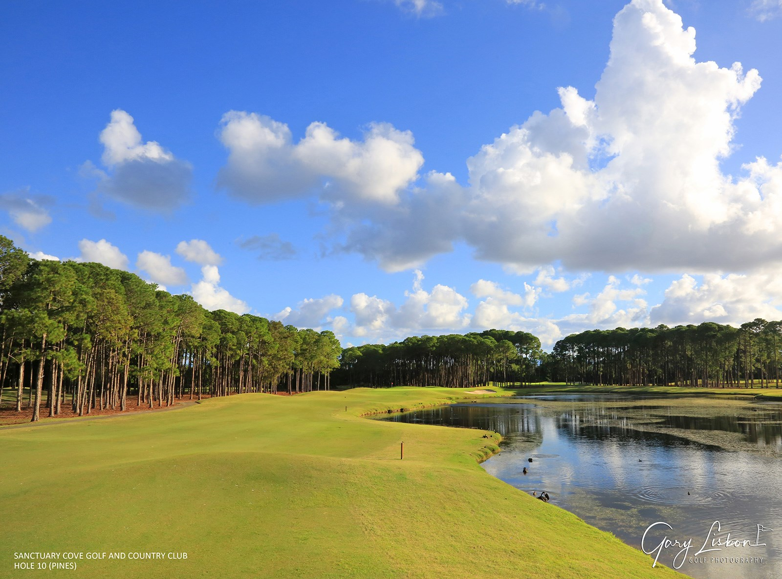 Sanctuary Cove Golf and Country Club - The Pines Hole 10