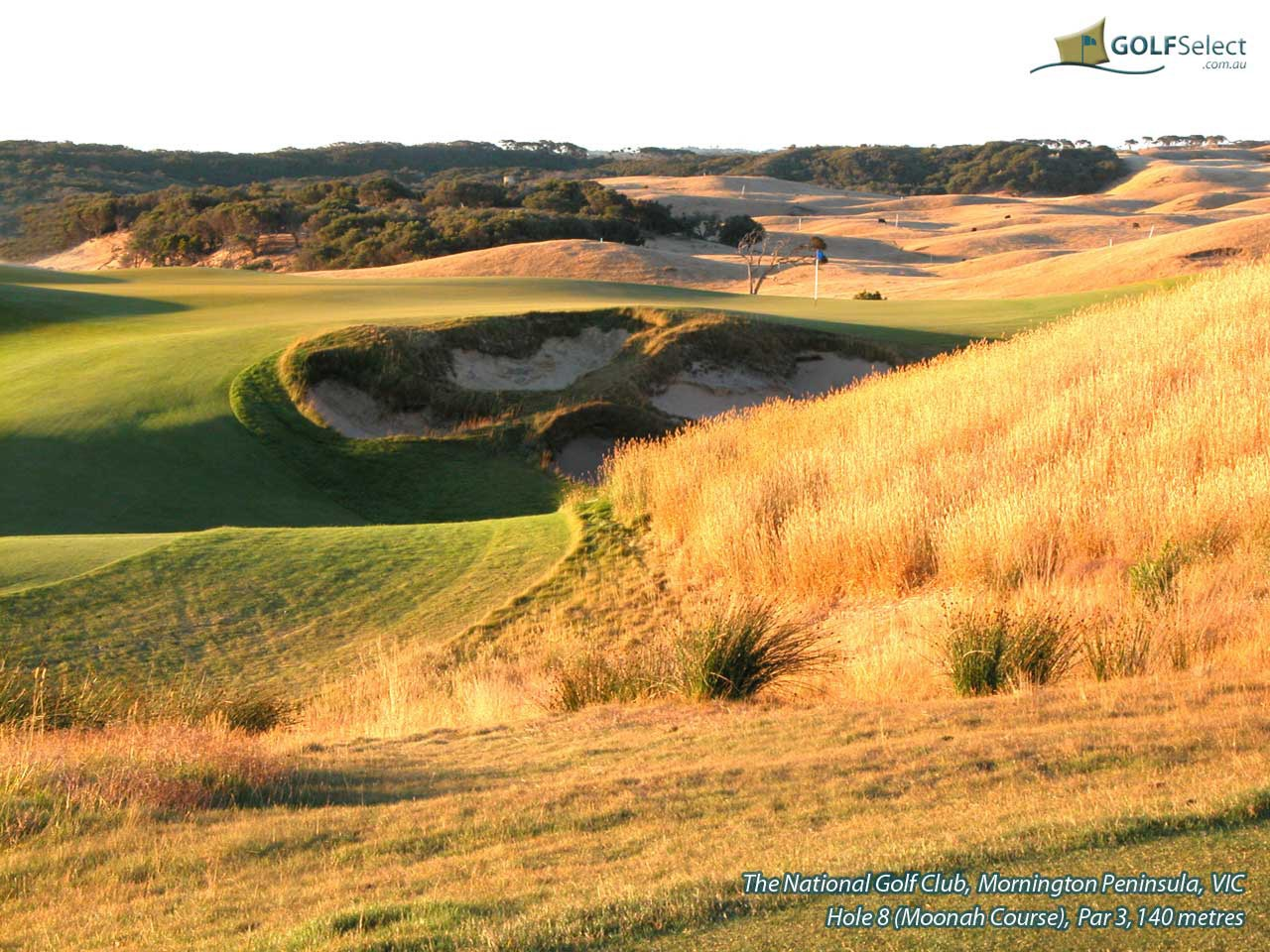 The National Golf Club (Moonah Course) Hole 8 (Moonah)