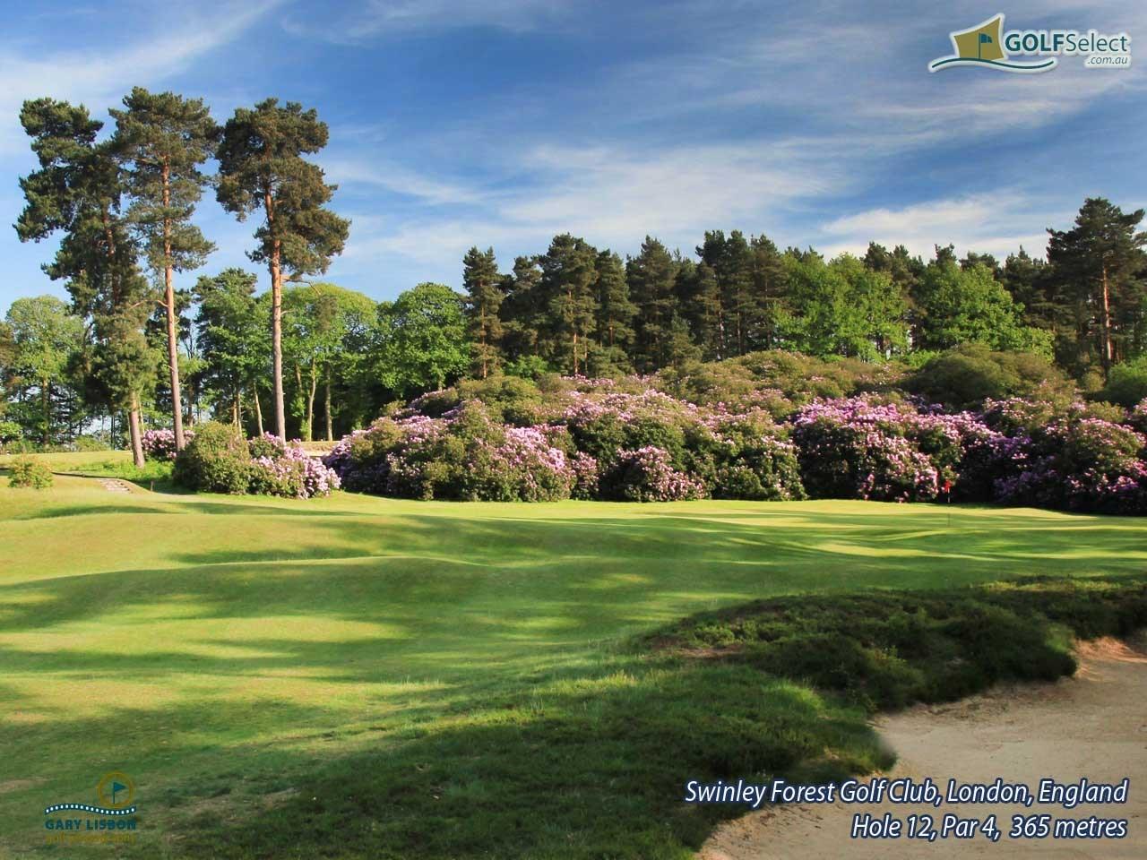 Golfselect Golf Wallpaper Swinley Forest Golf Club