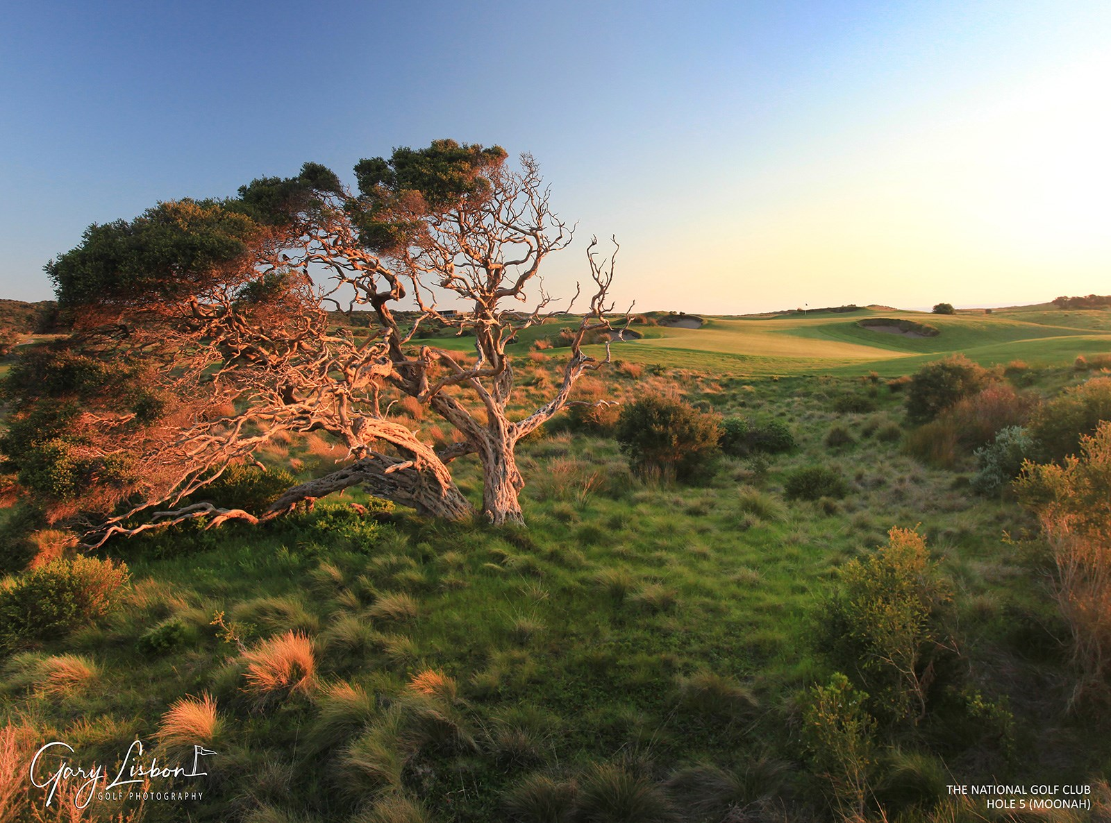 The National Golf Club (Moonah Course) Hole 5