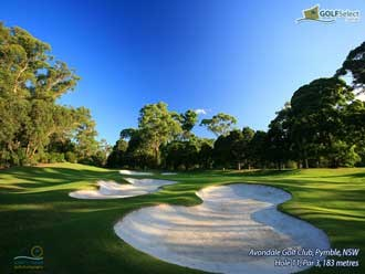 Avondale Golf Club Hole 11, Par 3, 183 metres